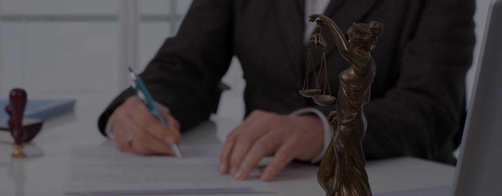отдельные профессиональные юридические услуги